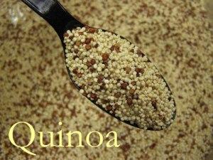 quinoa8-1