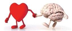 cerebro-y-corazon